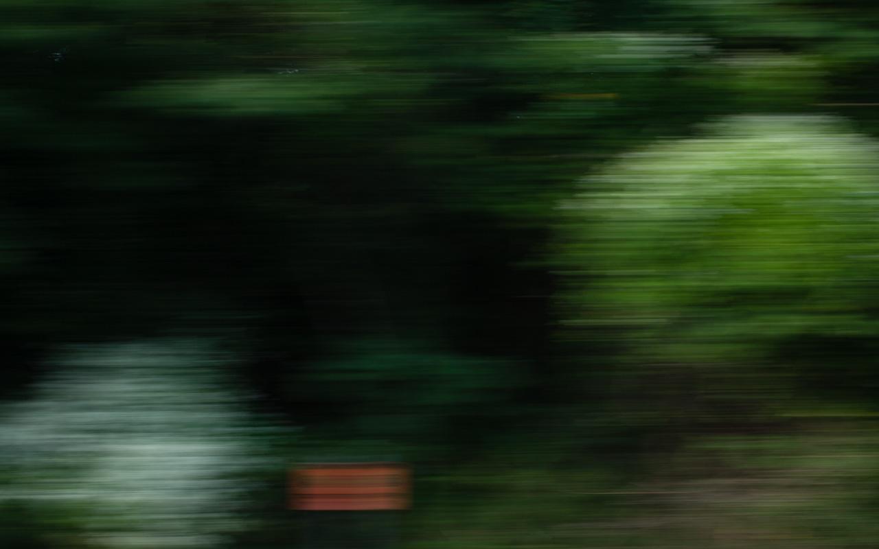 train ride, august 27 copyright James Sinks